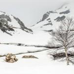 Pireneje fot Kasia Nizinkiewicz